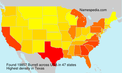 Surname Burrell in USA