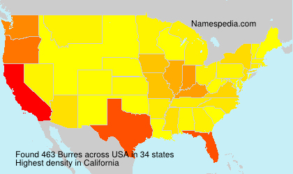 Surname Burres in USA