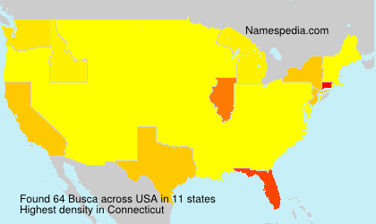 Surname Busca in USA