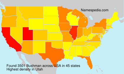 Surname Bushman in USA