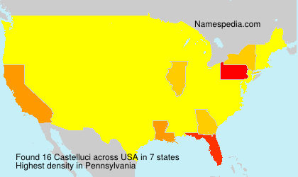 Surname Castelluci in USA