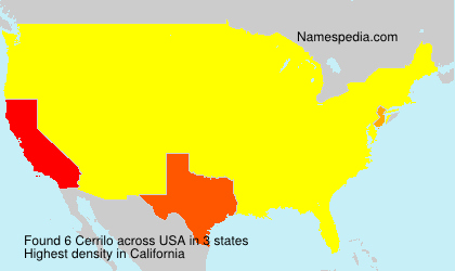 Surname Cerrilo in USA