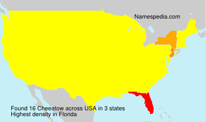 Surname Cheeatow in USA