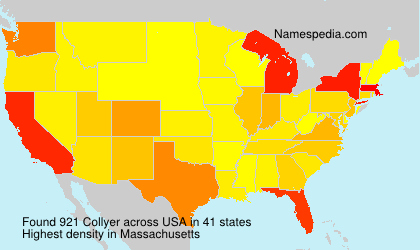 Surname Collyer in USA