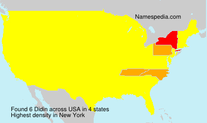 Surname Didin in USA
