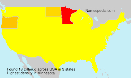 Surname Dillerud in USA