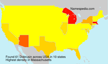 Surname Dobrusin in USA