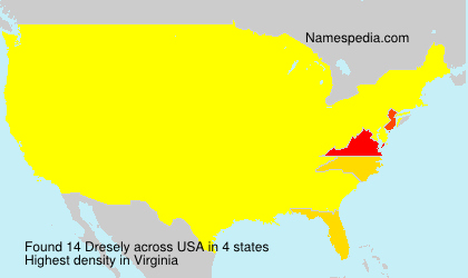 Surname Dresely in USA