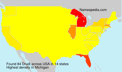 Surname Drudi in USA