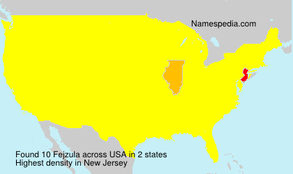 Surname Fejzula in USA