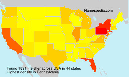 Surname Fleisher in USA