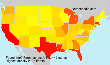 Surname Forest in USA
