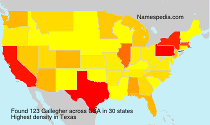 Surname Gallegher in USA