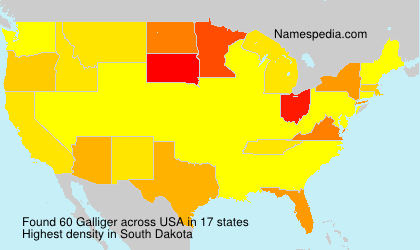 Surname Galliger in USA
