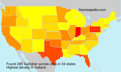 Surname Galligher in USA