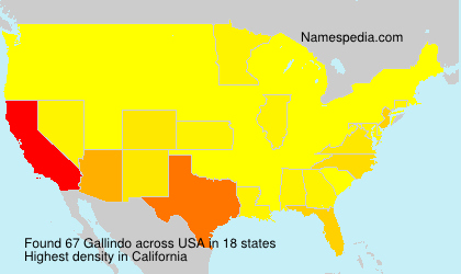 Surname Gallindo in USA
