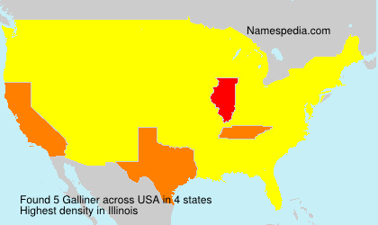 Surname Galliner in USA