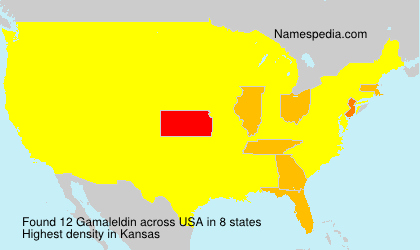Surname Gamaleldin in USA