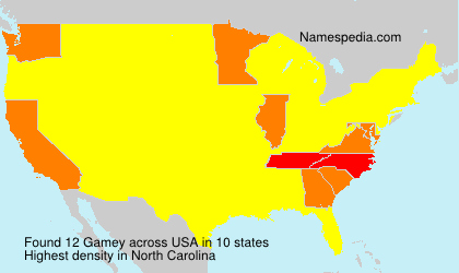 Surname Gamey in USA