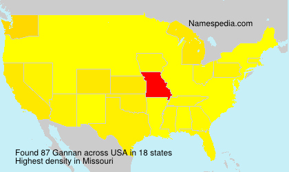Surname Gannan in USA