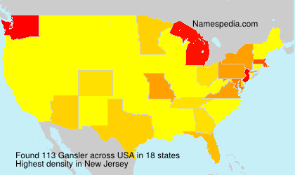 Surname Gansler in USA
