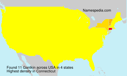 Surname Gantkin in USA