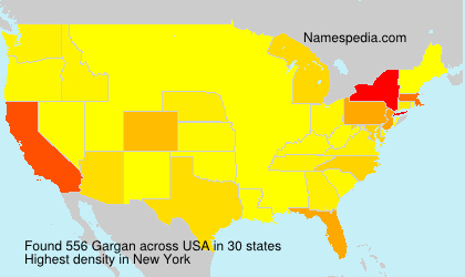 Surname Gargan in USA