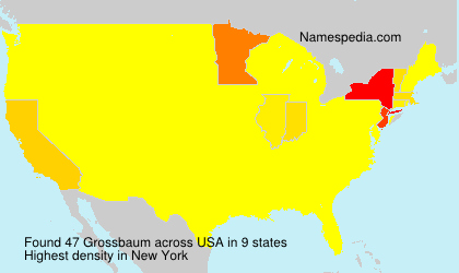 Surname Grossbaum in USA