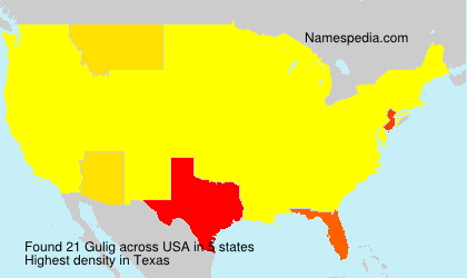 Surname Gulig in USA