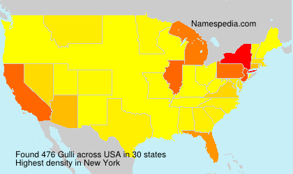 Surname Gulli in USA