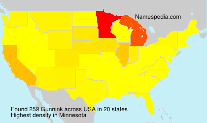 Surname Gunnink in USA