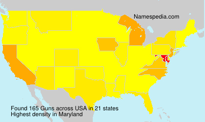 Surname Guns in USA
