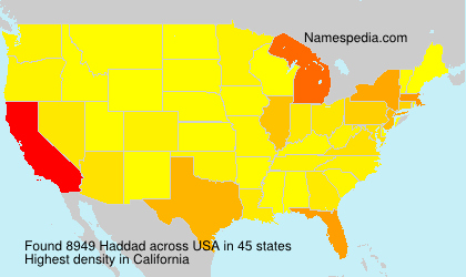 Surname Haddad in USA