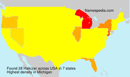 Surname Haliczer in USA