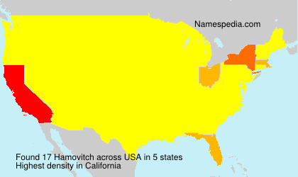 Surname Hamovitch in USA