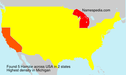 Surname Hamzie in USA
