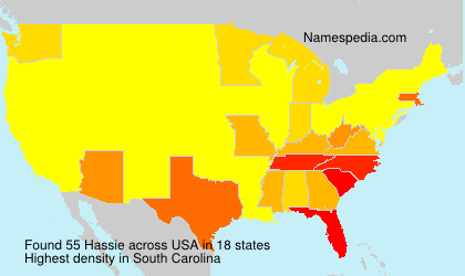 Surname Hassie in USA