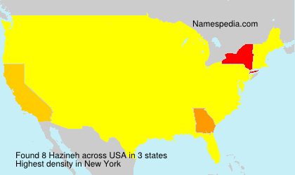 Surname Hazineh in USA