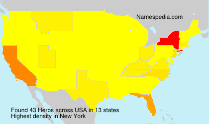 Surname Herbs in USA
