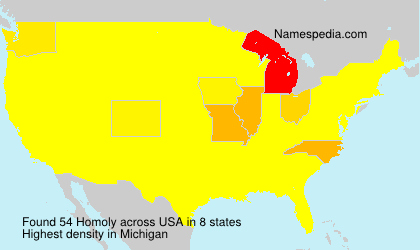 Surname Homoly in USA