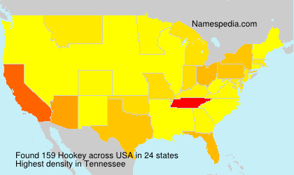 Surname Hookey in USA
