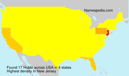 Surname Hubbi in USA