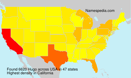 Surname Hugo in USA