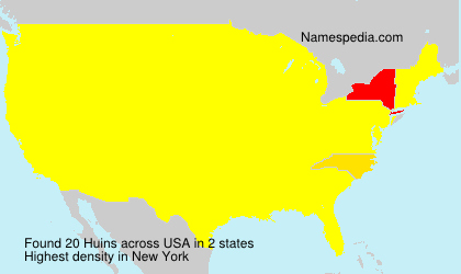Surname Huins in USA
