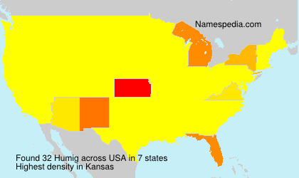 Surname Humig in USA