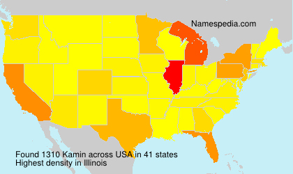 Surname Kamin in USA