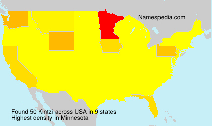 Surname Kintzi in USA