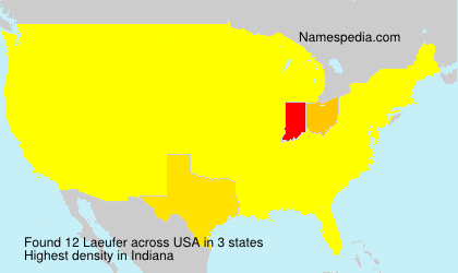 Surname Laeufer in USA