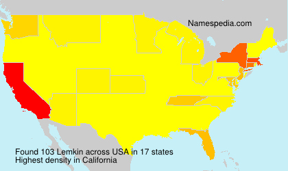 Surname Lemkin in USA