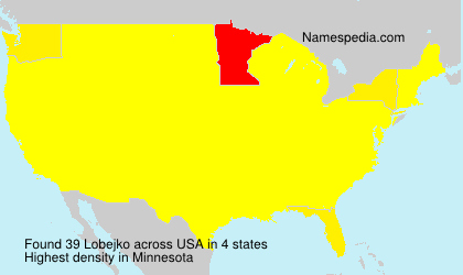 Surname Lobejko in USA